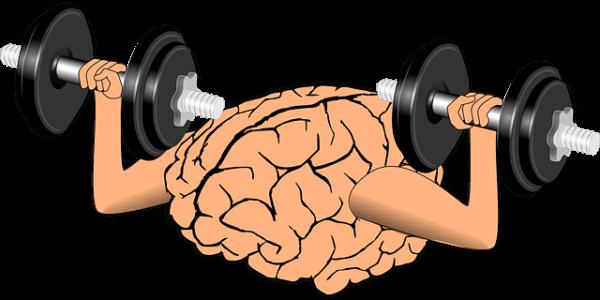 ダイエットには脳をだますのが一番!