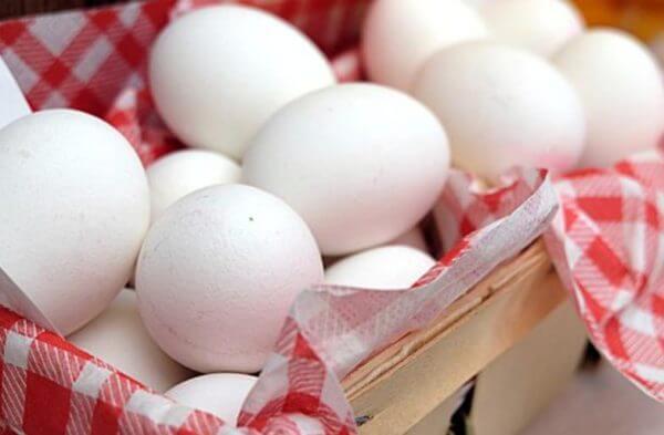 筋肉を老けさせない卵