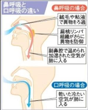 出典:西日本新聞