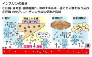 出典:medimag.jp