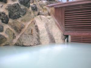 薬草ヒュウガトウキ(日本山人参)と温泉の効能