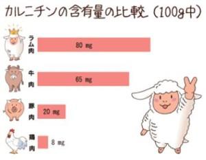 カルチニンの含有量の比較