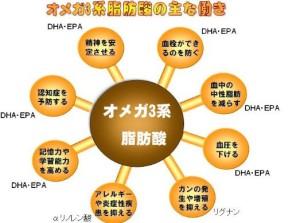 オメガ3系脂肪酸の主な働き