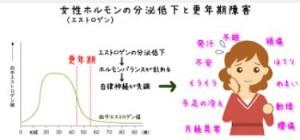 出典:hakoshima.com