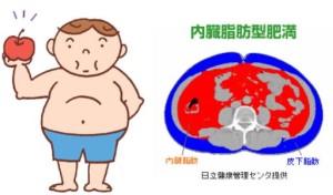 内蔵脂肪型肥満
