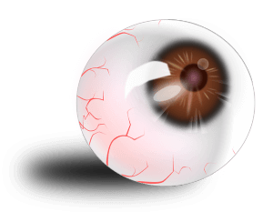 eyeball-151124_640
