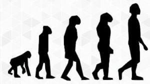 動物から進化した人間
