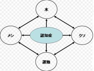 認知証4つの基本要素